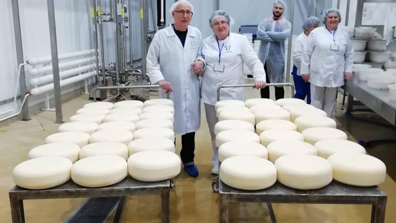 Первая варка сыра по голландской технологии